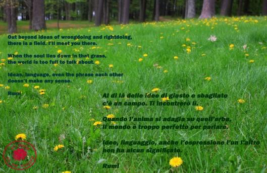 Rumi, poesia
